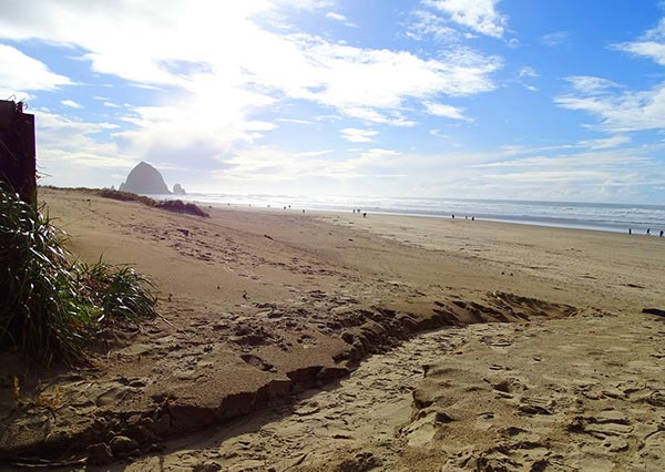 cannon_beach_1